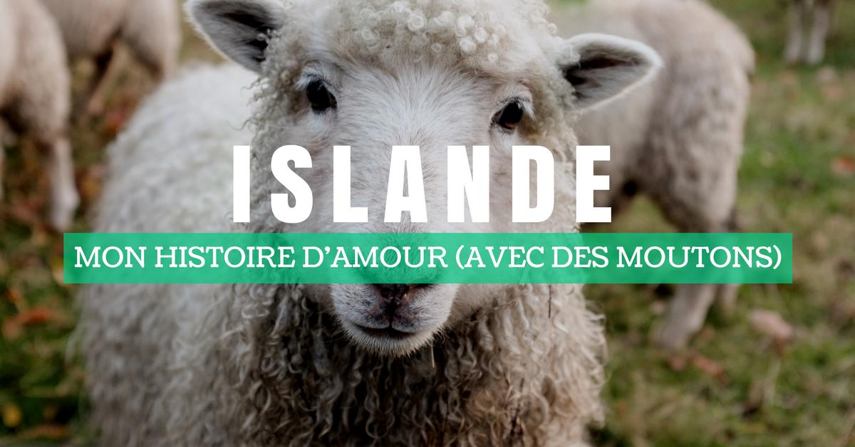 ce que vous ne savez pas sur les moutons islandais annie anywhere. Black Bedroom Furniture Sets. Home Design Ideas